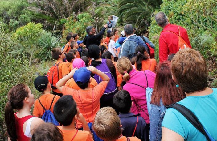 Los Realejos ofrece el VIII programa de ocio en la naturaleza y educación ambiental 'Actúa verde'