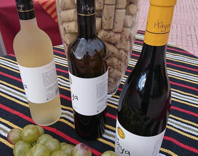Los Realejos celebrará este martes 'Vinos de cordón' con un nuevo homenaje gastronómico y musical
