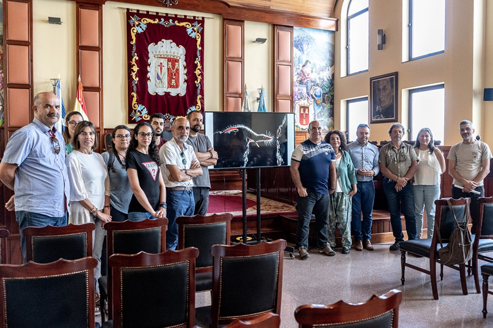Alejandro Betoret, David Taño y Pedro Frías, premios Fotonatura Los Realejos 2019 entre 149 obras presentadas