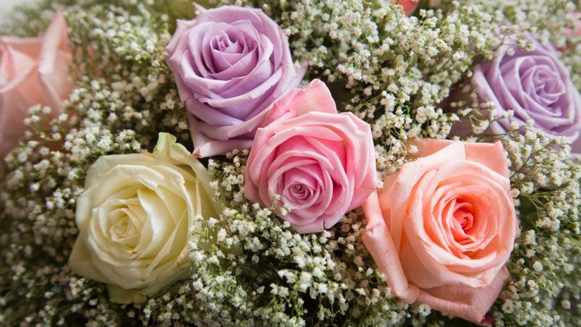 Las floristerías podrán acceder a los cementerios para enramar