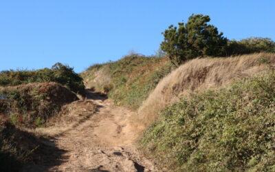 Los Realejos solicita al Cabildo la cofinanciación del arreglo del primer tramo del camino La Corona-La Balona