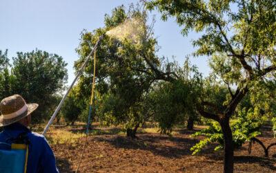 Los Realejos retoma la formación en manipulación de productos fitosanitarios con un nuevo curso este mes